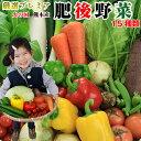 野菜セット 送料無料 気まぐれ野菜増量中! プレミアム野菜セット 野菜15種+自慢のパプリカのおまけ付