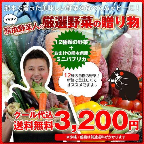 野菜セット 送料無料 気まぐれ野菜増量中! イケメン野菜セット 野菜12種+熊本県産 名物!ミニパプリカおまけ付!