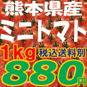 ミニトマト【ピュアチェリー/チカ2品種混合 1kg】九州/野菜/熊本/新鮮/安全/
