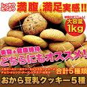 たっぷり増量!お徳用 おから豆乳クッキー 1kg(250g×4袋)【豆乳おからクッキー 割れクッキー 無選別クッキー お試し スイーツ】【のし・包装不可】