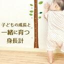 【キッズデザイン賞】身長計 ウォールステッカー シール 子供 メモリ 柱 細い 出産祝い シンプル 成長 安全 子ども 身…
