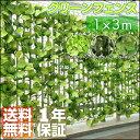 〈1年保証〉グリーンフェンス 3m グリーンカーテン グリーン カーテン フェンス カーテン グリーン ガーデンフェンス イミテーション フェイクグリーン 植物...