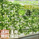 〈1年保証〉グリーンフェンス 2m グリーンカーテン グリーン カーテン フェンス カーテン グリーン ガーデンフェンス イミテーション フェイクグリーン 植物...