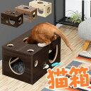 1年保証 猫 おもちゃ 猫箱 ボックス ベッド 遊び ねこ ネコ 玩具 オモチャ 小屋 室内 ストレス発散 運動不足 対策 多頭飼い シニア キャット 猫用 猫ベッド ペット用品 ペットグッズ ●[送