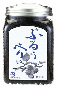 野生種ブルーベリー480g【ドライフルーツ】