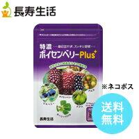 特濃ボイセンベリーPlus期間限定価格【PCスマホ疲れ、アイケアに】20種の植物由来健康成分配合 アントシアニン 葉酸 エラグ酸 ビタミン類〜ネコポスで送料無料〜約1ヶ月分(31粒)