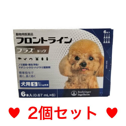 ◎◎【メール便・送料無料】犬用 フロントラインプラス S(5〜10kg未満)6本入 [2個セット]※新パッケージでのお届けとなります。