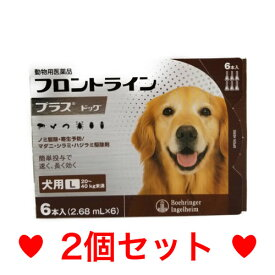 C【メール便・送料無料】 犬用 フロントラインプラス L(20〜40kg未満)6本入 [2個セット]
