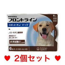 C【メール便・送料無料】犬用 フロントラインスポットオン L(20〜40kg未満)6本 [2個セット]