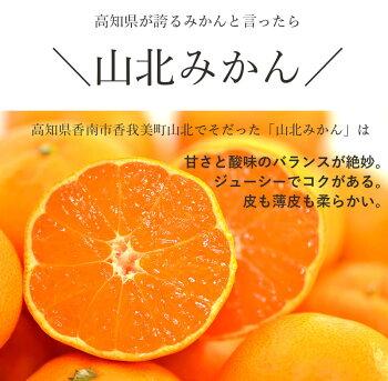ハッピーナッツカンパニー高知産みかんチップス無添加23g