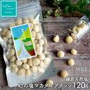 ハッピーナッツカンパニー 鎌倉天然塩 幻の塩マカダミアナッツ120g