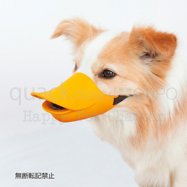 ■OPPO quack closed[クァック]/L○