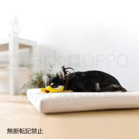 ■OPPO quack SS○