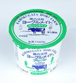 ホリ乳業 腸内活性ヨーグルメイト プレーン 90g 20個入