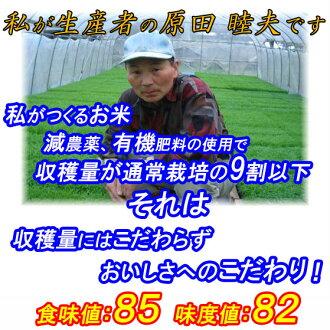丰满的厨师和 26 年新潟县茶道生产大米 30 公里,光泽度好,粘性,味道越光三茶道 * 北海道和九州地区需要额外的运送 450 日元。