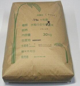 【送料無料】新米令和1年産新潟県佐渡産こしいぶき玄米25kg炊き上がりのツヤが良く、粘りがあり、コシヒカリに匹敵する食味を持っています。*北海道・九州区域は別途送料500円が掛かり