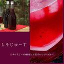 お歳暮 ギフト 家庭用 自宅用 農薬不使用 信州 小川村 シソ 紫蘇 ジュース 澄んでる しそ じゅーす 2本 セット