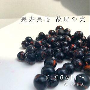 国産 有機栽培 冷凍 ナツハゼ ハゼベリー ブルーベリー スムージー 2kg
