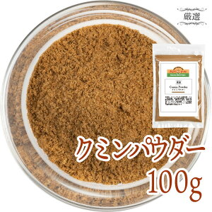 クミン クミンパウダー 100g 素材厳選スパイス 香辛料