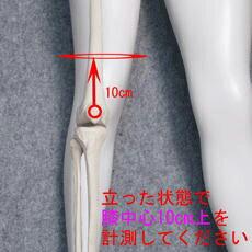スポーツ用膝サポーター/エクスエイドニーPCLサイズ