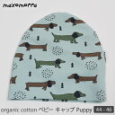Maxomorra organic cotton baby cap Puppy 44-46  7b0f7ceee25c
