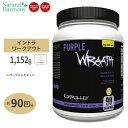 パープルラース パープルレモネード 90回分 1070g(2.35lbs)CONTROLLED LABS(コントロールラボ)Purple wraath アミ…