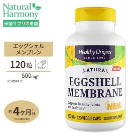 [お得サイズ]エッグシェル メンブレイン(卵殻膜) 500mg 120粒