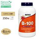 ビタミンB-100 250粒 約8ヶ月分 NOW Foods(ナウフーズ)B群10種 葉酸 ナイアシン ビオチン パントテン酸 PABA コリン …