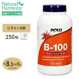 ビタミンB-100 250粒 NOW Foods(ナウフーズ)【全品ポイントUP★11月19日18:00-26日9:59迄】