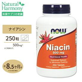 【全品ポイントUP★12日17:00〜】ナイアシン 500mg 250粒 NOW Foods(ナウフーズ)