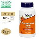 パントテン酸 500mg 100粒 NOW Foods(ナウフーズ)【注目】