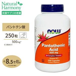 パントテン酸カルシウム250粒