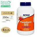 [最大8%OFFクーポン有]パントテン酸 500mg 250粒 NOW Foods(ナウフーズ)