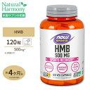 HMB 500mg 120粒《約3ヵ月分》 NOW Foods(ナウフーズ)トレーニング アメリカ製 高含有 BCAA バリン ロイシン イソロイ…