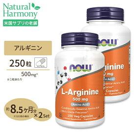 2個セット L-アルギニン 500mg 250粒 NOW Foods(ナウフーズ)