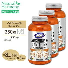 [3個セット]L-アルギニン & L-オルニチン 500mg 250mg 250粒 NOW Foods(ナウフーズ)