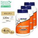 [3個セット] L-オルニチン 500mg 120粒 NOW Foods(ナウフーズ)