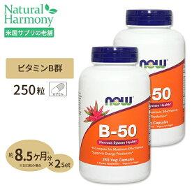 [2個セット][お得サイズ]ビタミンB-50 250粒 約8ヶ月分 B群11種 葉酸 ナイアシン ビオチン パントテン酸 PABA コリン イノシトール ベジカプセル NOW Foods(ナウフーズ)