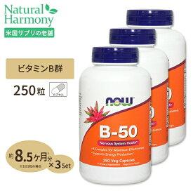 [3個セット][お得サイズ]ビタミンB-50 250粒 約8ヶ月分 B群11種 葉酸 ナイアシン ビオチン パントテン酸 PABA コリン イノシトール ベジカプセル NOW Foods(ナウフーズ)送料無料