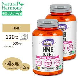 HMB 500mg 120粒 NOW Foods(ナウフーズ) [2個セット]