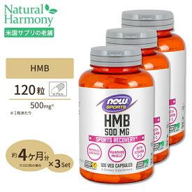 HMB 500mg 120粒 NOW Foods(ナウフーズ) [3個セット] 送料無料