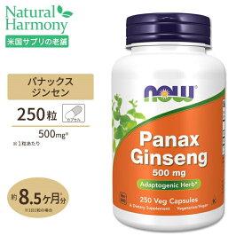 パナックスジンセン(朝鮮人参) 500mg 250粒 NOW Foods(ナウフーズ)