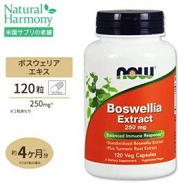 ボスウェリアエキス(クルクミン)120粒 NOW Foods(ナウフーズ)