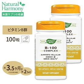 B-100コンプレックス(B2補酵素配合) 100粒 [2個セット]