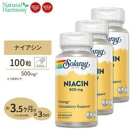 [3個セット]ナイアシン(ビタミンB3) 500mg 100粒