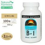 B-1(マグネシウム配合)500mg100粒