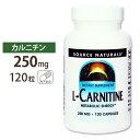 カルニチン サプリメント L-カルニチン 250mg 120粒/サプリメント/サプリ/ダイエットサプリ/カルニチン配合/Lカルニチ…