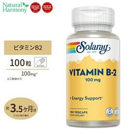 【全品ポイントUP★12日17:00〜】ビタミンB2 100mg 100粒