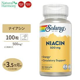 【全品ポイントUP★12日17:00〜】ナイアシン(ビタミンB3) 500mg 100粒