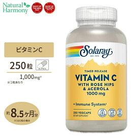 ビタミンC 1000mg (2段階タイムリリース型) 250粒